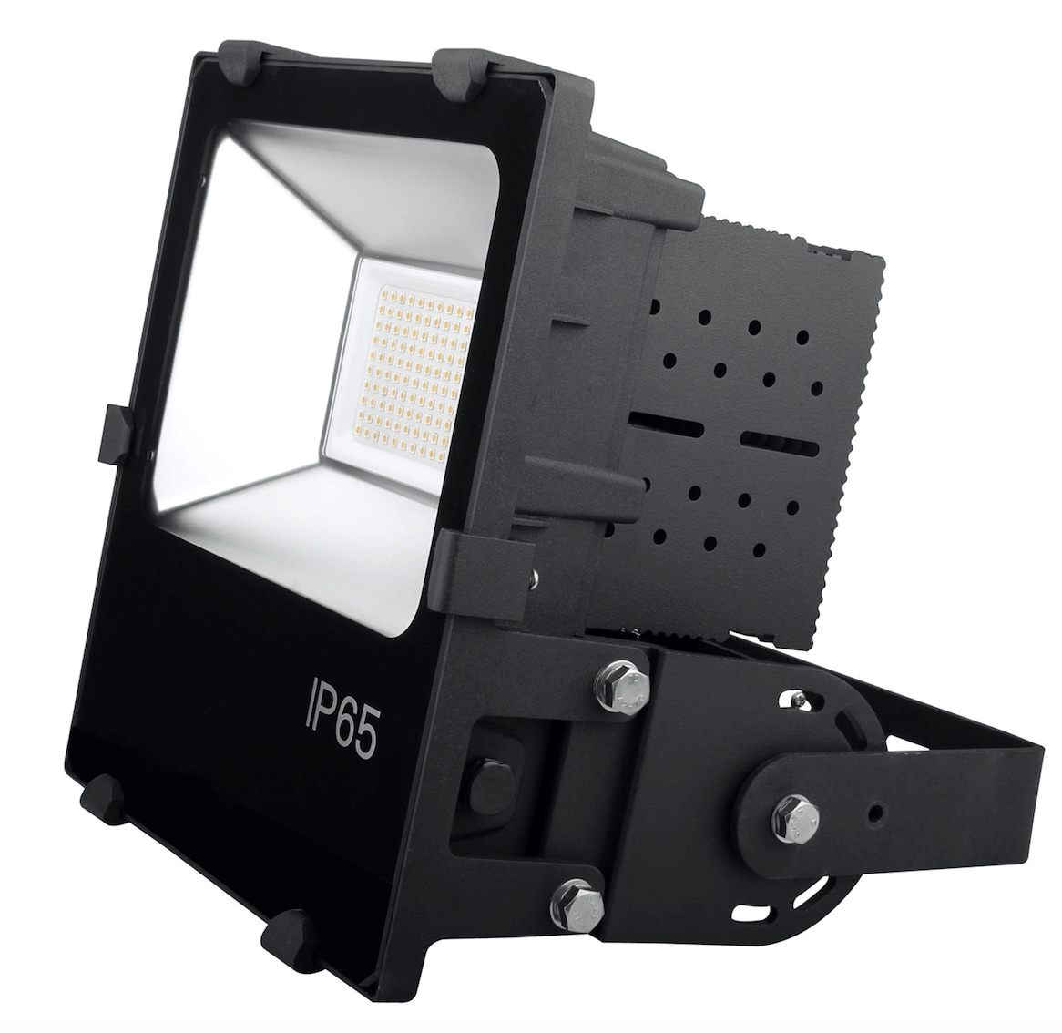 Offshore floodlight 100W Alu + Stainless steel IP65